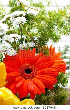 Bouquet Of Tulips, Gerberas, Greenery, Wild Flowers
