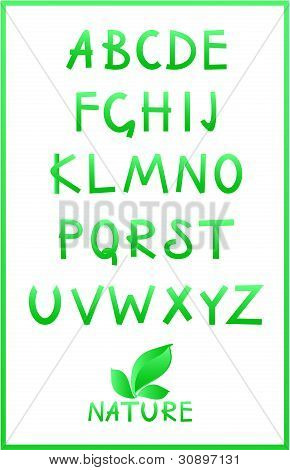 Green Alphabet. Vector Set