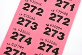 image of raffle prize  - Page of raffle tickets with black numbers - JPG