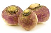 stock photo of rutabaga  - fresh turnips on a white background - JPG