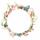 Watercolor Circle Border With Coral Reef Plants. Hand Painted Seaweeds, Crab And Starfish Isolated O poster