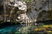 image of cenote  - Swimming in Gran Cenote - JPG