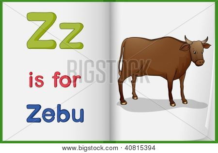 Illustration of a zebu in a book on a white background
