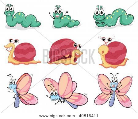 Illustration of a caterpillar, a butterfly and a snail on a white background