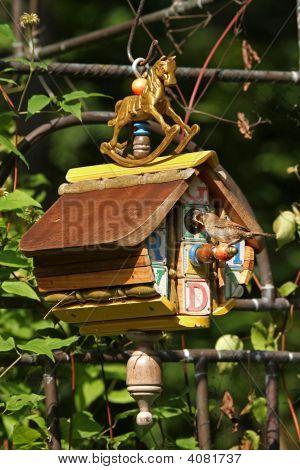 Wrens Feeding Babies In A Birdhouse