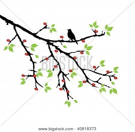 Branch With Bird