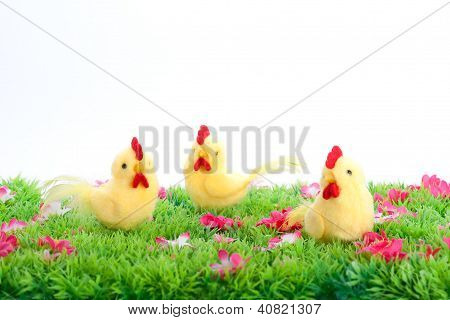 Three Yellow Chicken Isolated On A Green Meadow With Flowers On White Background