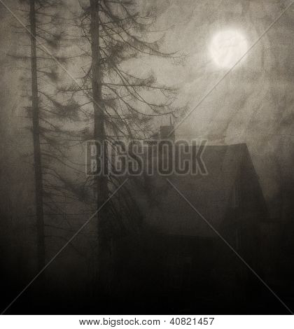 Vintage Forest Background
