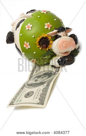 A Cow Bank
