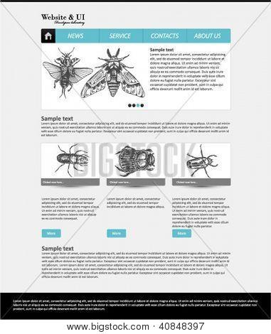 Website Vorlage entomologischen Sammlung