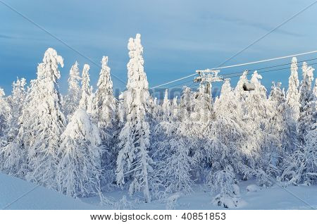 Ski Lift Among Snow-covered Trees