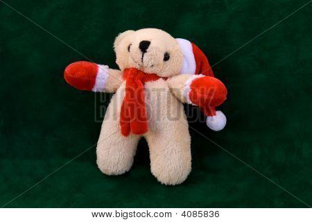 Bear With Cap