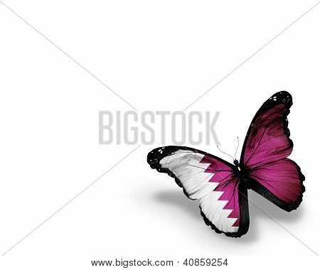 Qatari Flag Butterfly, Isolated On White Background
