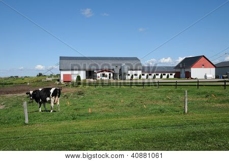 Quebec, A Farm In Lac A La Croix