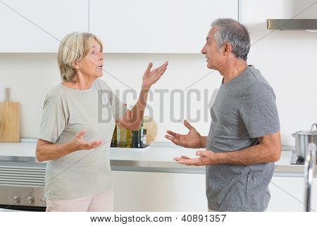 Wife quarrelling with her husband in the kitchen