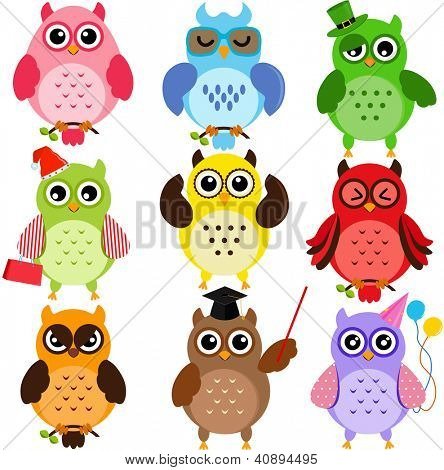 Set of Colorful Owls with different characters