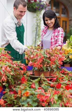 Garden center employee and customer talking about plants