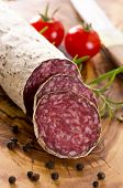 pic of deer meat  - cervine salami - JPG