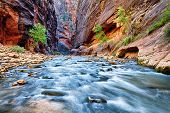stock photo of southwest  - view of the Virgin River Narrows in Zion National Park  - JPG