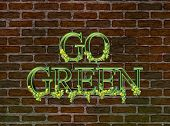 Go Green On An Old Brick Wall