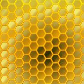 pic of honey bee hive  - Gentle transition between colors and shapes creates a surreal honey world - JPG