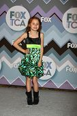 PASADENA, CA - JAN 8:  Maggie Elizabeth Jones attends the FOX TV 2013 TCA Winter Press Tour at Langh