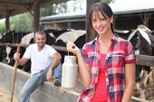 stock photo of dairy barn  - Woman with a churn of milk in front of a herd of cows - JPG