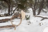 stock photo of wrangler  - Western ranching equipment including a lasso and cowboy hat on a fence in the thick winter snow - JPG
