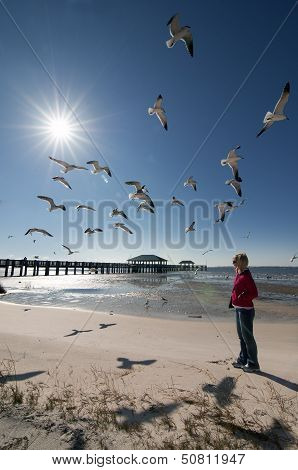 Blonde Woman Looking Seagulls