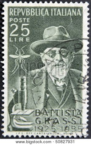 ITALY - CIRCA 1956: A stamp printed in Italy shows Battista Grassi circa 1956