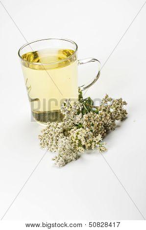 Herbal tea in a glass mug
