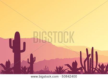 Mexican landscape