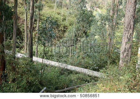 Suspension Bridge Over Canyon