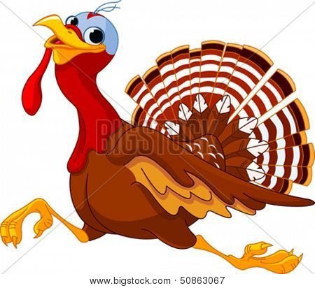 Cartoon turkey running, isolated on white background