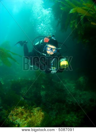 Female Scuba Diver Swimming Through The Kelp In Catalina