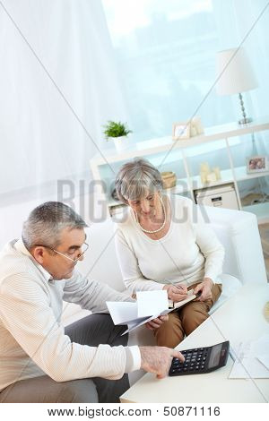 Portrait of mature husband and wife making financial revision at home