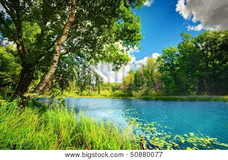 Clean tranquil lake in green spring summer forest. Blue sunny sky