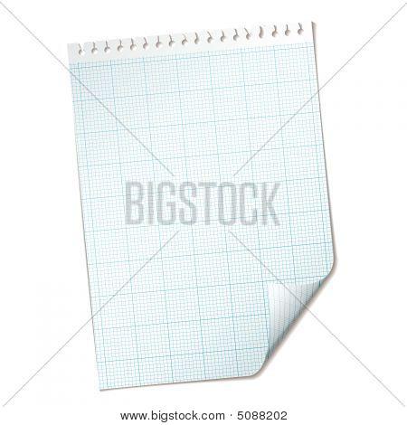 Ripped Sheet Grid