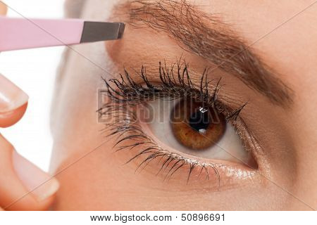 Youtg Beautiful Woman Eyebrow Plucking Tweezers Eyes Hair