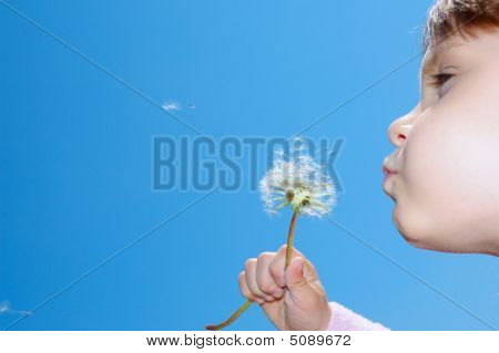 Blowing Away