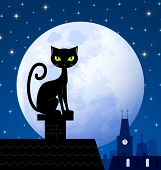 pic of wildcat  - Black cat on chimney with moon town and starry night in the background - JPG