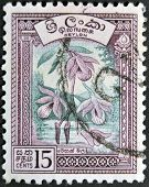 A stamp printed in the Ceylon sri lanka shows Vesak orchid (Dendrobium)