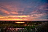 picture of marshlands  - Sunset at Merritt Island Brevard County Florida USA - JPG