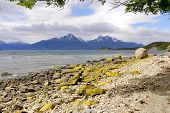 foto of tierra  - Tierra del Fuego National Park is a national park on the Argentine part of the island of Tierra del Fuego in the ecoregion of Patagonic Forest and Altos Andes - JPG