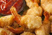 picture of crustacean  - Fried Organic Coconut Shrimp with Cocktail Sauce - JPG