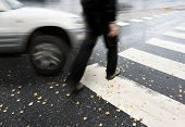 pic of pedestrians  - Man on pedestrian crossing in autumn in danger of being hit by car