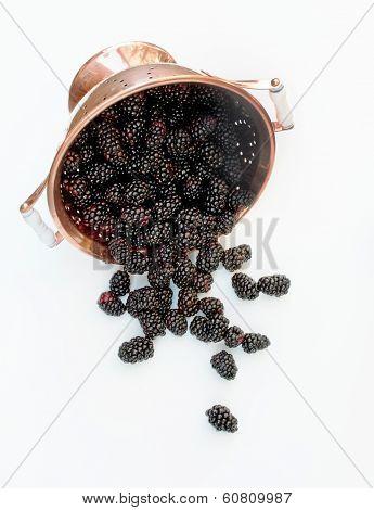 Copper Colander with Fresh Blackberries