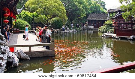 Chinese Tourists Feeding Koi Carp In A Traditional Garden, China