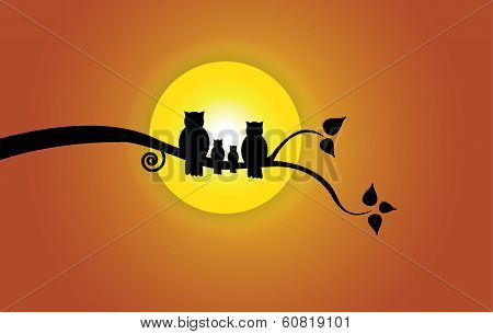 Evening Sun, Tree Leaf & Orange Sky And Owl Family Silhouette