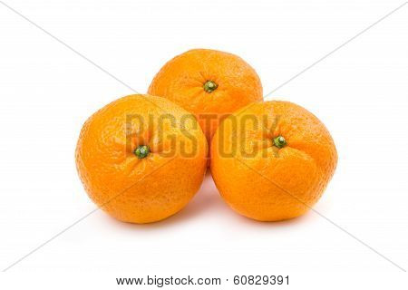 Three Sweet Mandarins